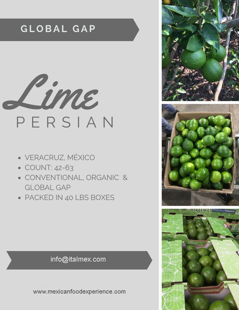 LIME PERSIAN_IT